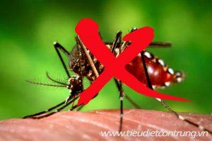 Phun muỗi tại Quế Võ