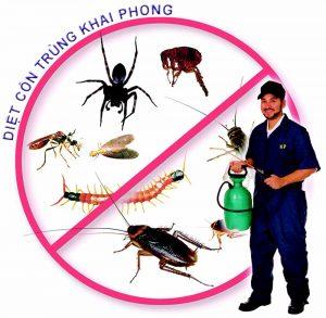 Phun côn trùng tại khu công nghiệp Numora